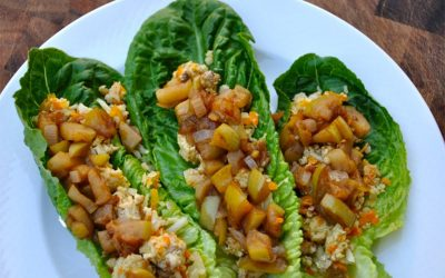 Turkey Lettuce Wraps with Quick Apple Chutney